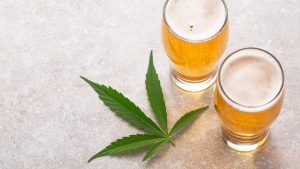 Two Glasses of Alcoholic Drinks with Hemp Leaf Beside Them