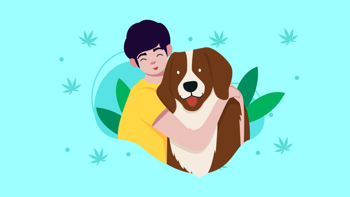 Dog Owner Hugging His Brown and White Color Dog