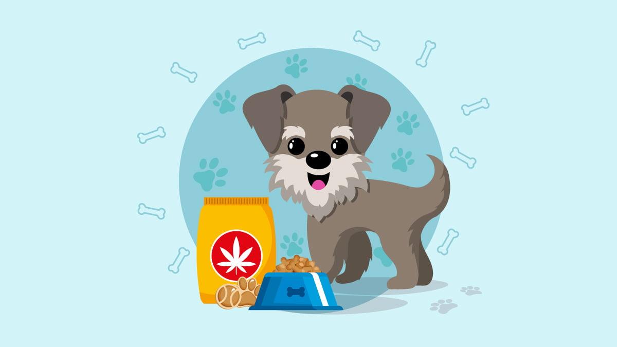 illustration of a dog with CBD treats