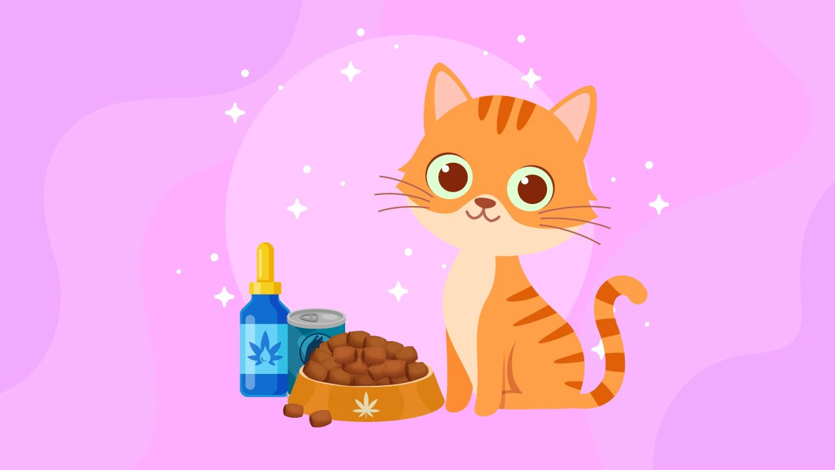 an illustration of a cat with CBD oil and pet food on a bowl