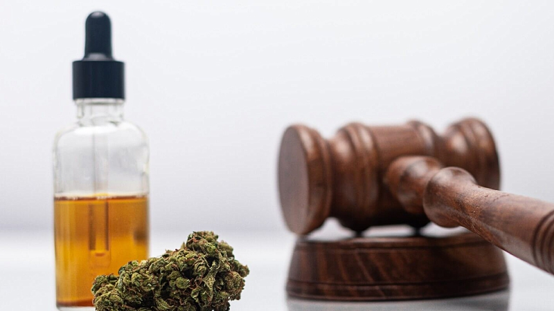 CBD oil extract in bottle, a hemp bud and a gavel