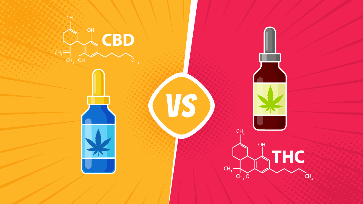 an illustration of CBD versus THC
