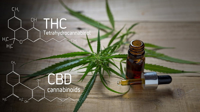 Hemp oil extract in a bottle and hemp leaves on a table with THC and CBD formula