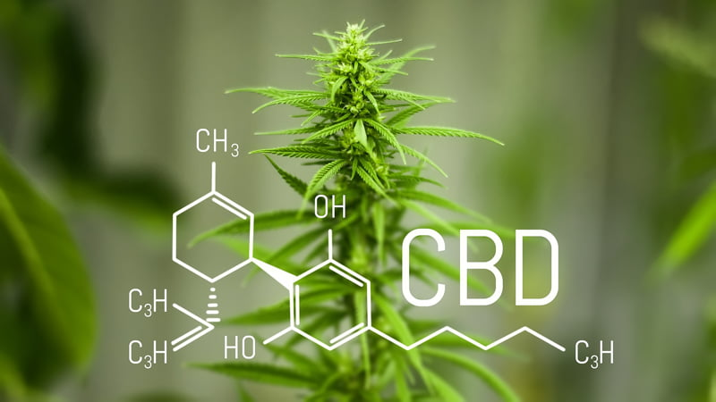 CBD chemistry structiure and hemp flower behind