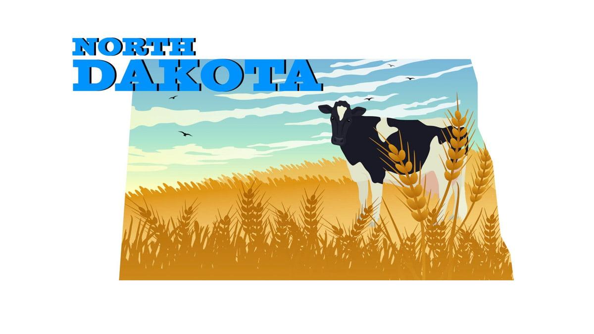 Illustration of North Dakota State Map