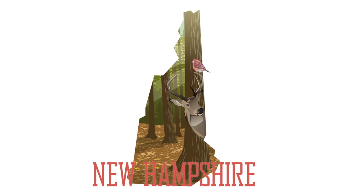 Illustration of New Hampshire state map