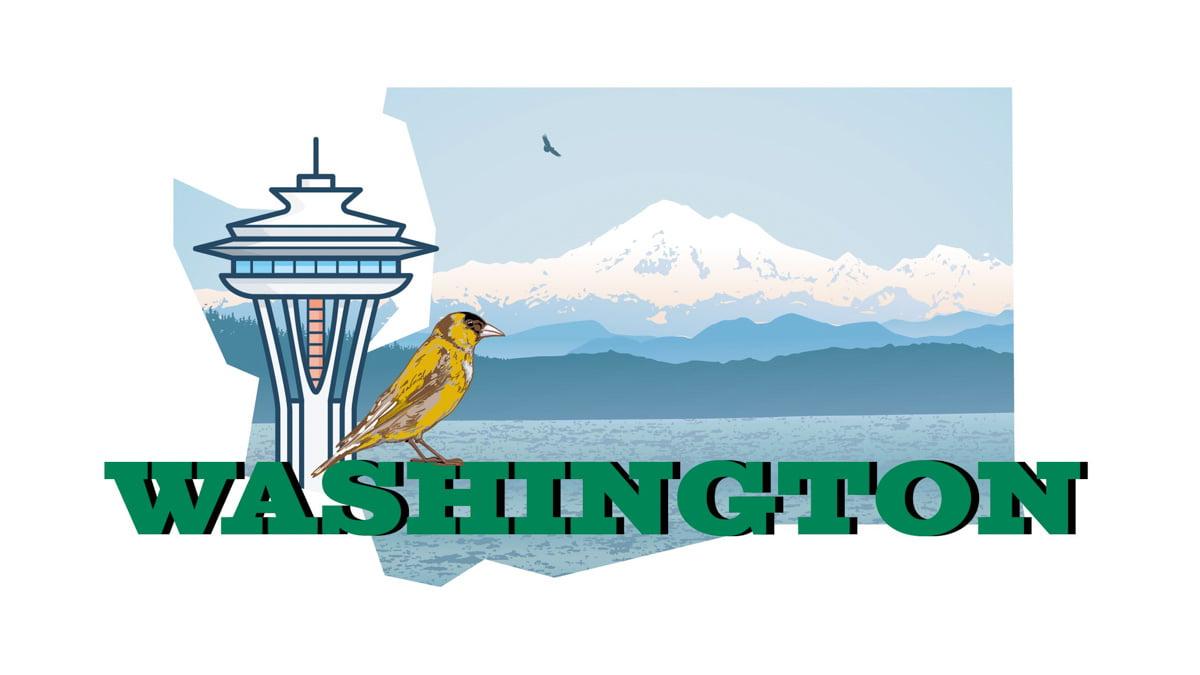Illustration of Washington State map