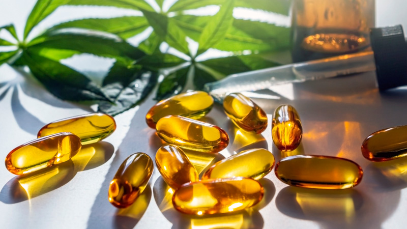 CBD Capsules For Dogs Lying on the Surface with Hemp Leaves Background