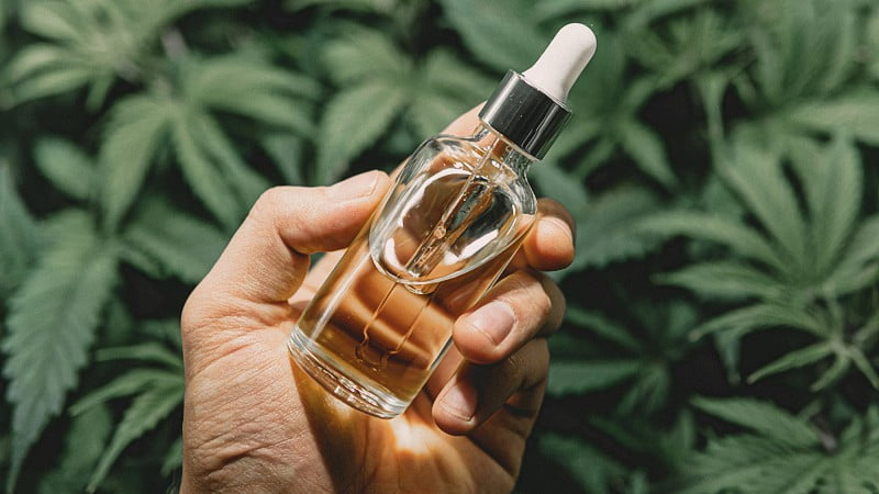 a hand holding a bottle of D8 THC bottle with hemp leaves background