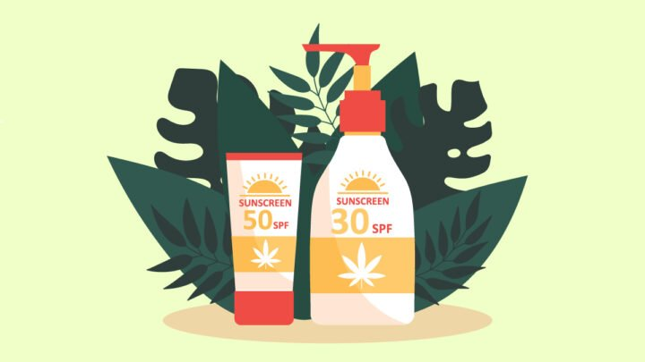 illustration of CBD sunscreen with leaves behind
